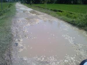 Salah satu jalan yang menghubungkan ke Kec. Dander, Bojonegoro